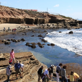 Walk to the Tide Pools