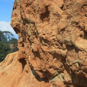 Torrey Pine geology