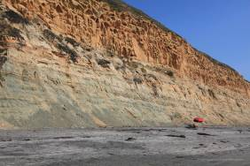 Torrey Pine cliffs from beach