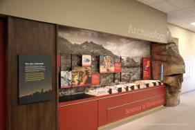 Archaeology display