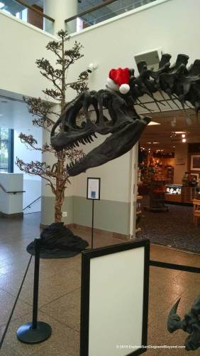 Allosaurus donning holiday hat at theNAT